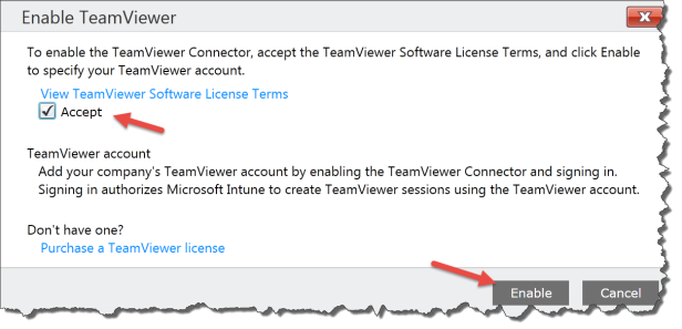 Intune Team Viewer 02