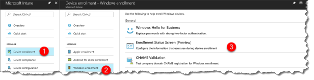 Windows Autopilot Enrollment Status Screen - 01